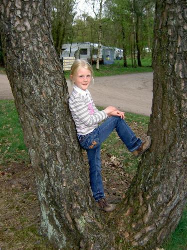 2008 Harskamperdennen 03