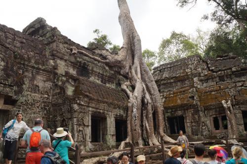 Cambodja 15-01-2017  (048)
