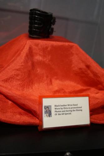Graceland Exhibitions (12) (1)