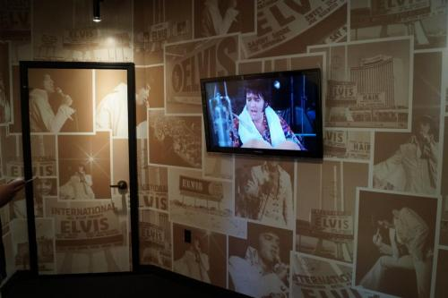 Graceland Exhibitions (2)