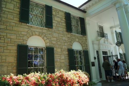 Graceland again (2)