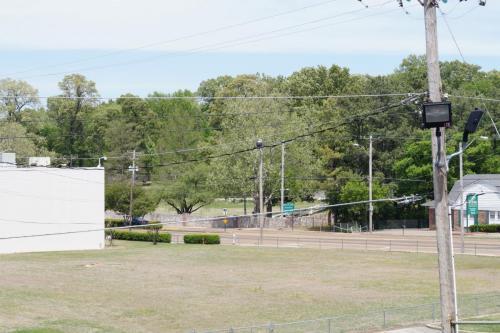 Graceland wall (1)