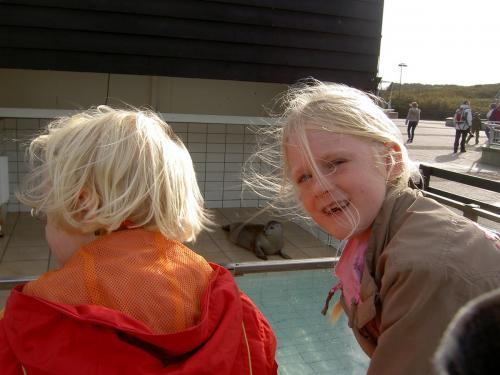 Texel herfst 2008  (026)