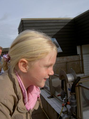 Texel herfst 2008  (028)