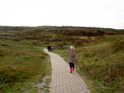 Texel herfst 2008  (034)