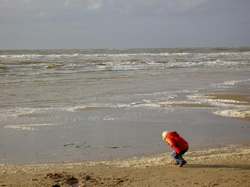 Texel herfst 2008  (040)