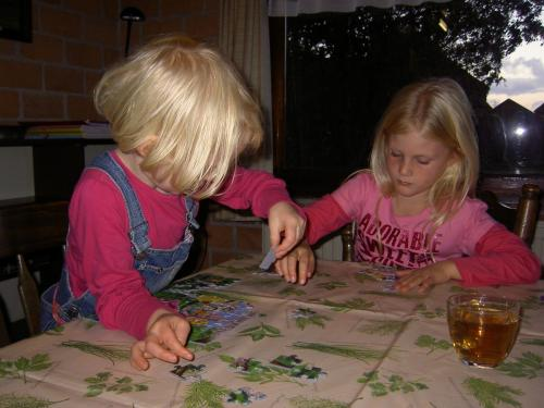 Texel herfst 2008  (007)