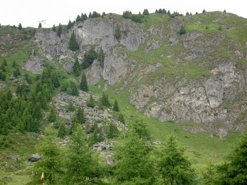 Zomer 2008 044
